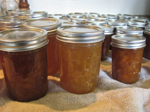 Finished jars of marmalade